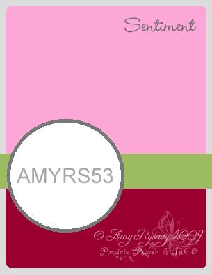 Amyrs53