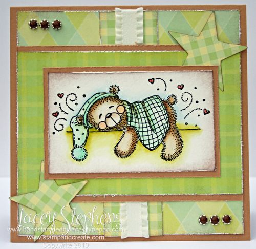 Nightime Bear_Stars_Lacey 3