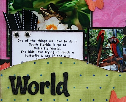 Butterfly World 6