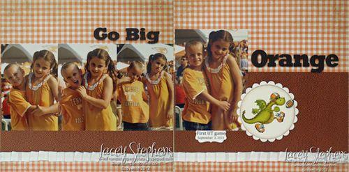 Go Big Orange
