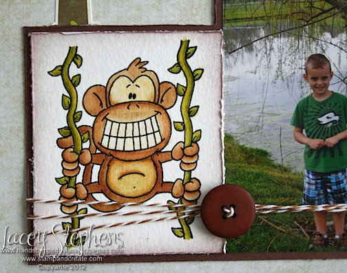 Monkey Boy 3