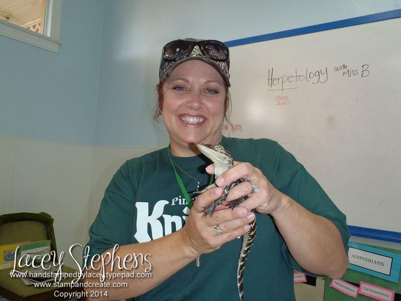 Lacey gator wm