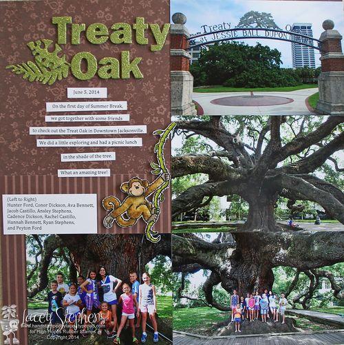 Treaty Oak 1