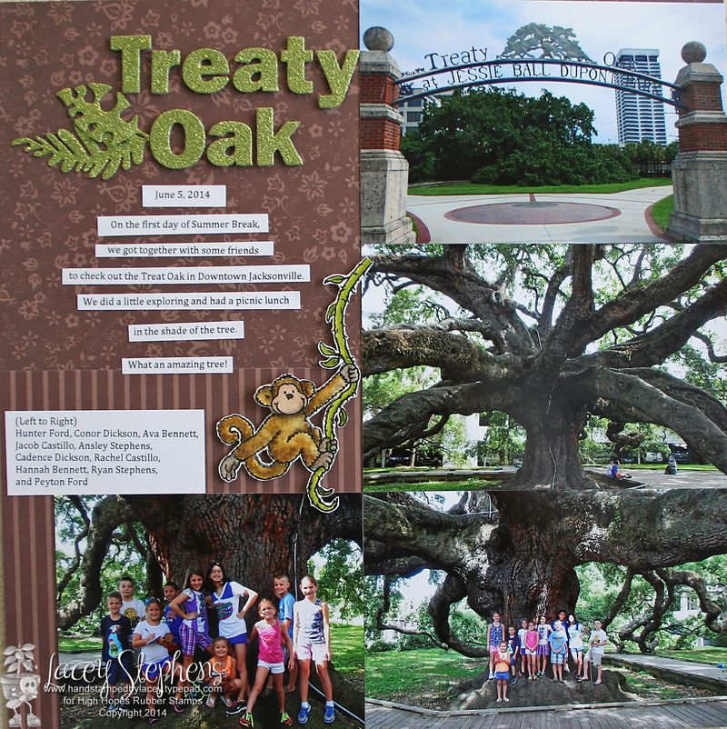 Treaty Oak 1